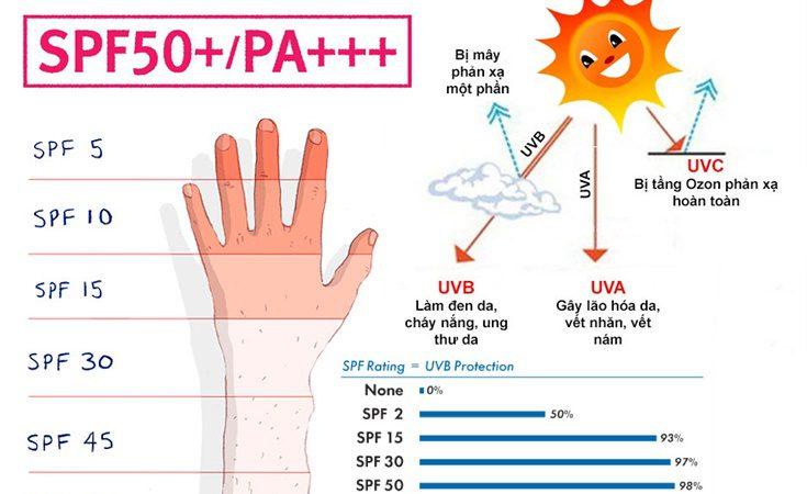 [Mới] Kem Chống Nắng Có Chỉ Số SPF 50 PA+++ Là Gì?